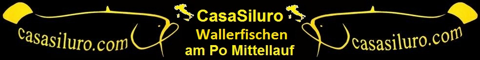 CasaSiluroHeader